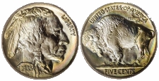 Buffalo Nickels